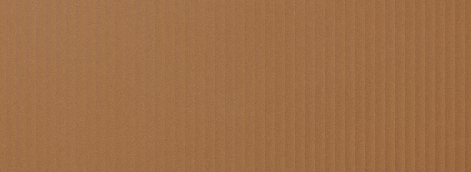 DBS Packaging Pvt. Ltd.